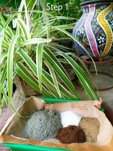 hypertufa planter, tutorial, akila, gardening project, diy, spider plant