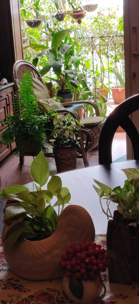 Jayashree Rajan's garden apartment tour on The Keybunch: rattan chain in the balcony area