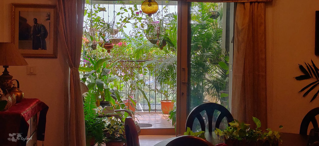 Jayashree Rajan's garden apartment tour on The Keybunch: balcony in the dining area